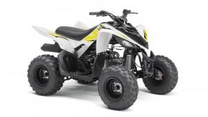 Yamaha YFM90R wit